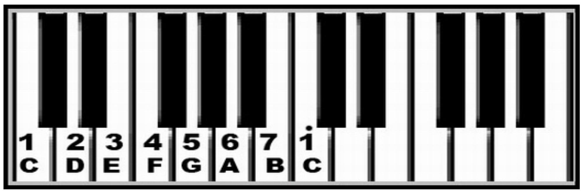 音名、唱名在钢琴上的位置